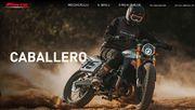 Fantic Caballero Flat Track 500 (6)